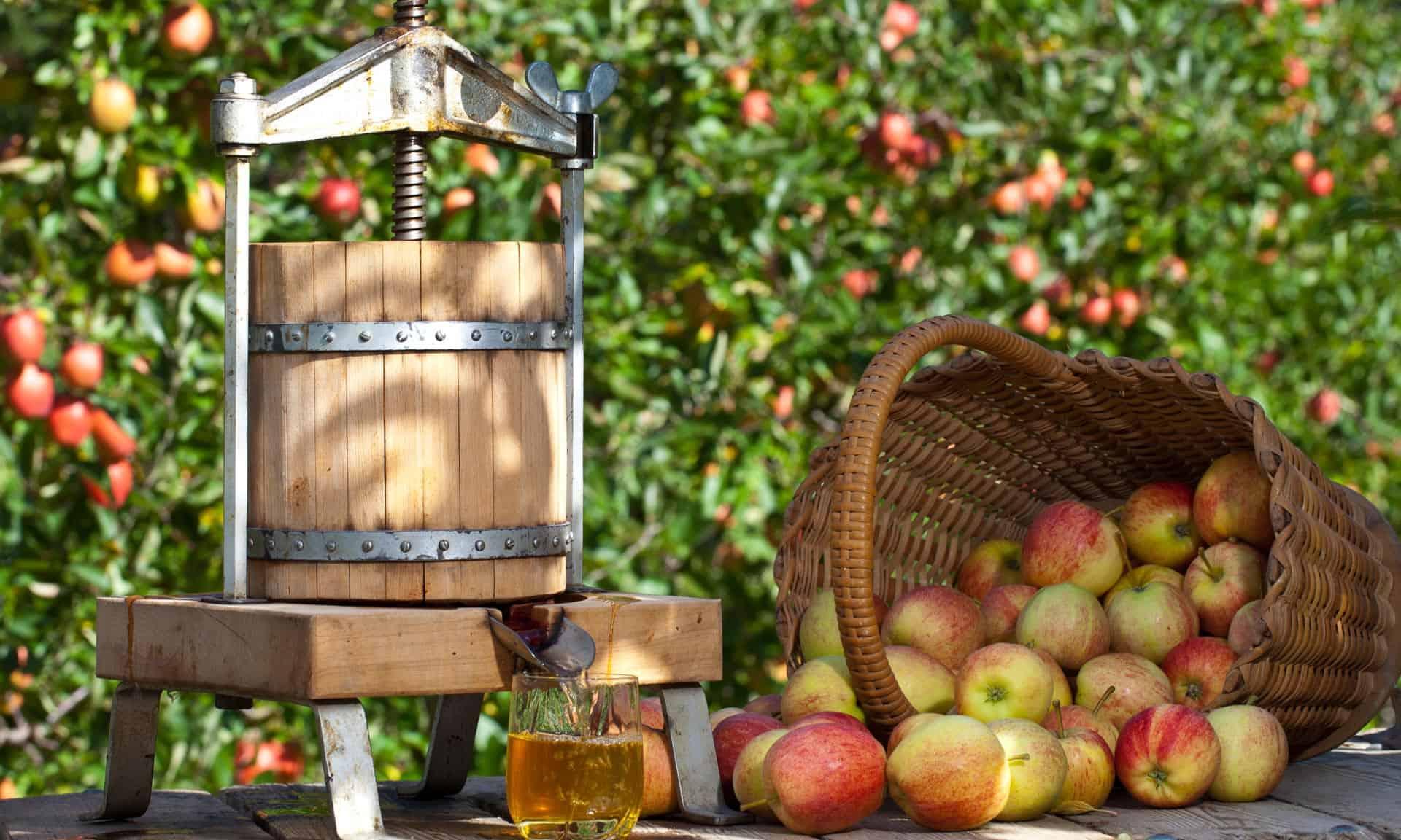 Cider-Apfelpresse-Brauunion-Graz